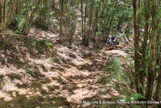 gionata-nencini-partireper-ride-true-adv-outback-motortek-klim-pistoia-moto-giri-bivacco-toscana-wild-25-56-agosto-2020-067