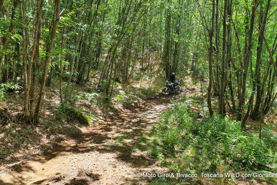 gionata-nencini-partireper-ride-true-adv-outback-motortek-klim-pistoia-moto-giri-bivacco-toscana-wild-25-56-agosto-2020-071